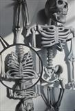 Plastic Bones by Steve Lawson, Painting, Oil on canvas